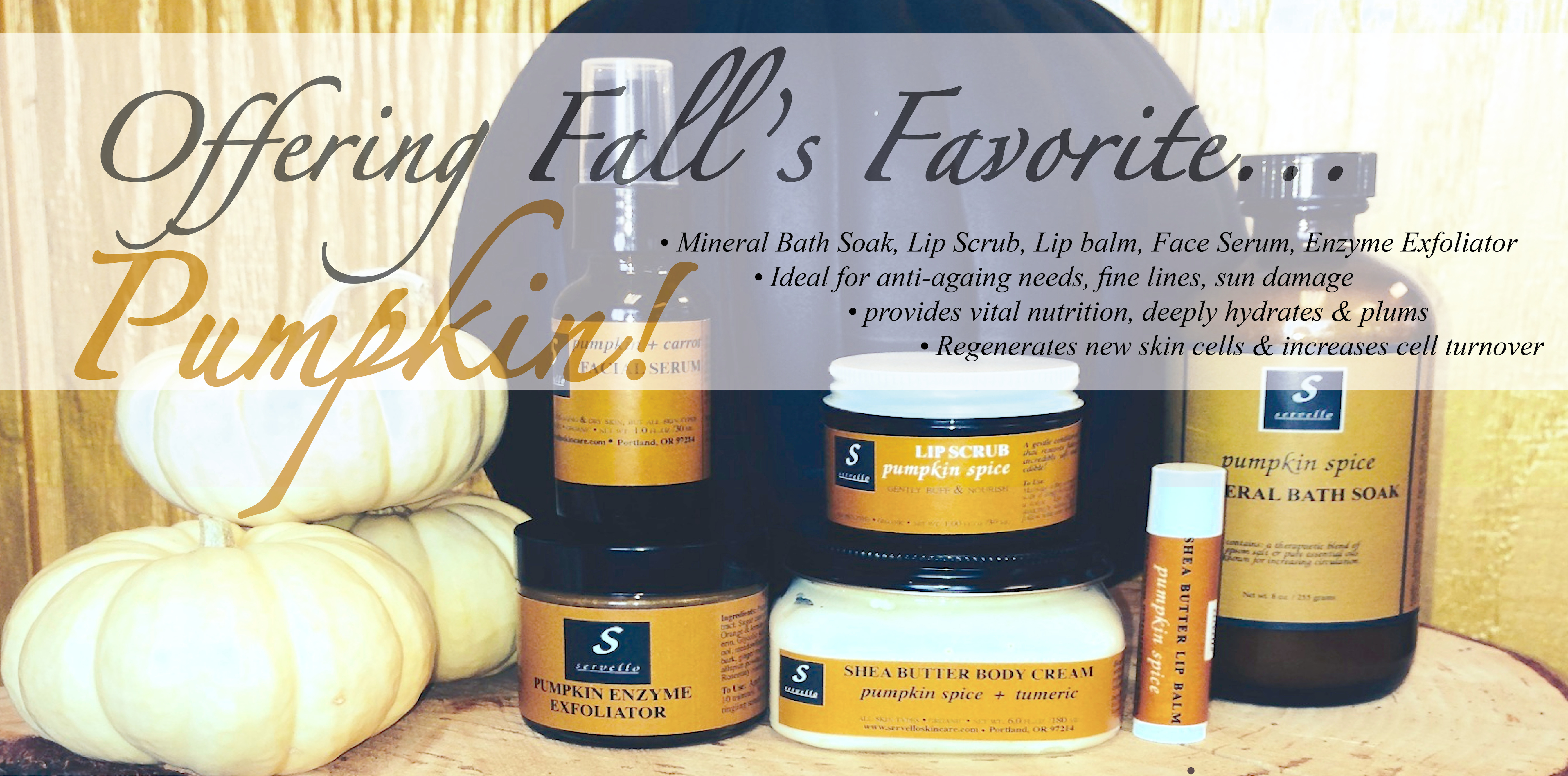 Fall Harvest Collection